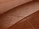 2002 Subaru All Models Touch Up Paint | Copper Orange Mica 12K, 17L