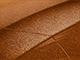 2017 Chevrolet All Models Touch Up Paint | Light My Fire Orange Metallic 408B, G8N, WA408B