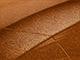 2005 Chevrolet All Models Touch Up Paint | Sunburst Orange Metallic 802K, 85, WA802K